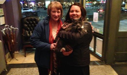 Oreo the cat found safe. Photo courtesy: Armstrong Hotel via Oreo Armstrong Facebook page