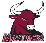 Logo, Mavericks