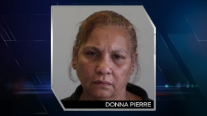 An older booking photo of Donna Pierre, who drove her car off a bridge on Tuesday. (Photo: Arapahoe County Police)