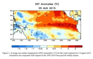 El Niño effects on ocean temperatures, as of Aug. 5, 2015