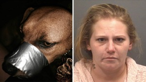 Kimberly Ann Howell of North Carolina duct taped her dog's mouth shut to keep it from barking.