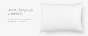 Photo: Pillow.DuoLingo.com