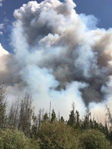 Beaver Creek Fire, June 21, 2016. (Photo: U.S. Forest Service)