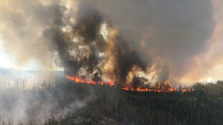 Beaver Creek Fire in northwest Colorado, June 2016. Photo: U.S. Forest Service
