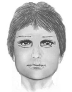 (Hit-and-run suspect sketch from Bratenahl police)