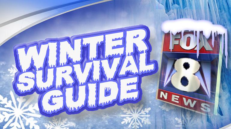 winter survival guide graphic