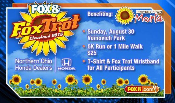 FOX 8 FOX Trot