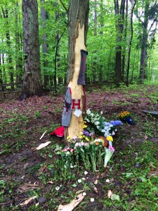 Flowers were left at the site of a crash in Gates Mills that killed two Hawken School students. (Photo: Melissa Reid/Fox 8 News)