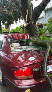 Car crushed at First and Sycamore Streets, Sandusky. (Photo courtesy of John Costello)