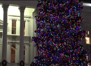 Capitol Tree Lighting Reflects the Times