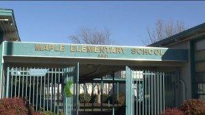 maple_elementary