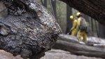 carstens fire, yosemite, mariposa
