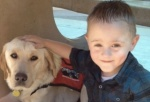 Service Dogs Help People with Special Needs