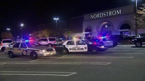 Shots fired at New Jersey mall