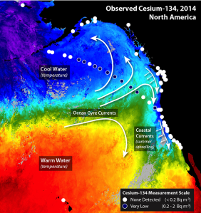 Satellite measuremeants of ocean temperature and the direction of currents help show where radionuclides from Fukushima are transported Courtesy: Woods Hole Oceanographic Institution