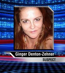 GingerZehner250