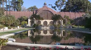 Balboa-Park-Lily-Pond