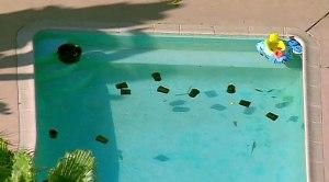 La Mesa Pool Deaths