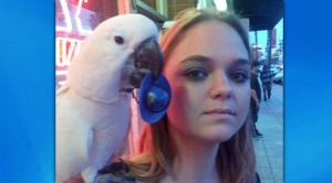 Katie Aldrich and her cockatoo