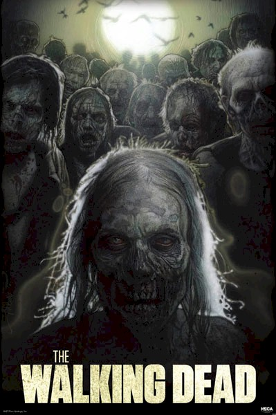 drew WALKING DEAD cool picture