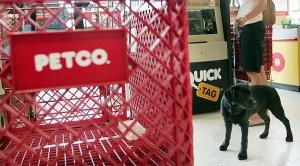 Petco Pet Store