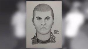 Sketch of North Park assault suspect.