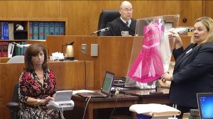 Evidence presented during a trial accusing Gregory Schwartz of dressing in a Barbie costume and assaulting a woman.