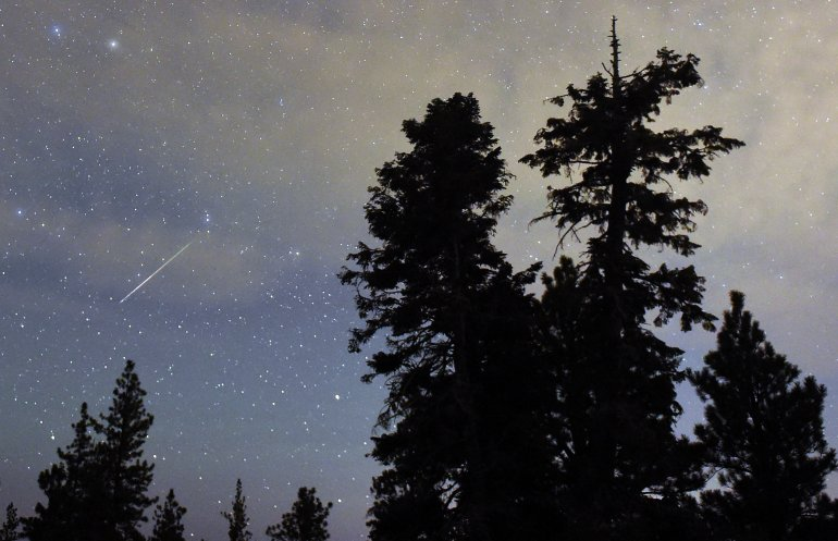 A Perseid meteor streaks across the sky above desert pine trees on August 13, 2015 in the Spring Mountains National Recreation Area, Nevada. The annual display, known as the Perseid shower because the meteors appear to radiate from the constellation Perseus in the northeastern sky, is a result of Earth's orbit passing through debris from the comet Swift-Tuttle. (Photo by Ethan Miller/Getty Images)