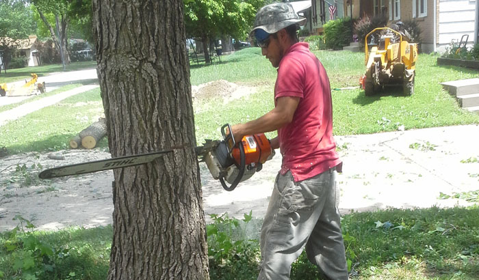 Carlos Gomez, 35, was killed while trimming a tree at a Parkville property on Monday, June 16. Picture provided by his family.