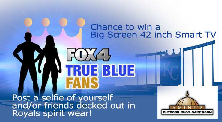 True Blue fan