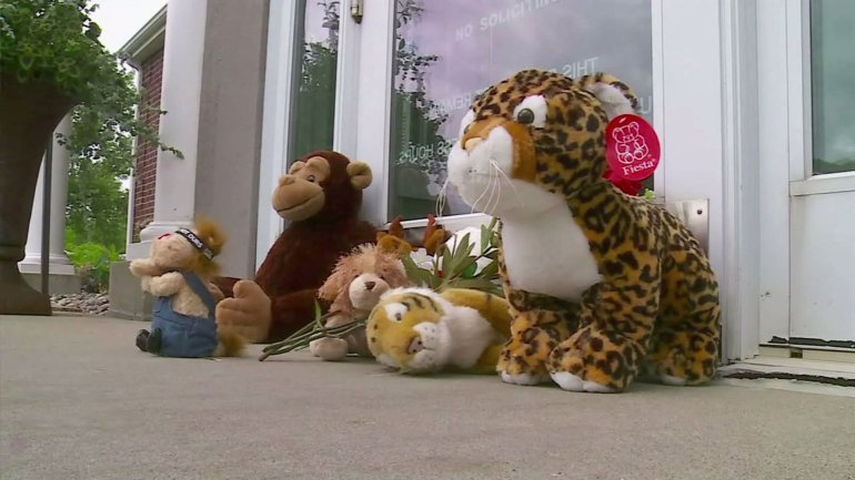 People placed stuffed animals at entrance of dental office. Courtesy: CNN
