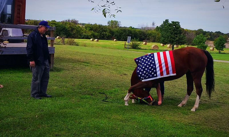 """An Unlisted Angel"" bows for a veteran who stopped by the stable. (image courtesy of Autumn Winkler)"