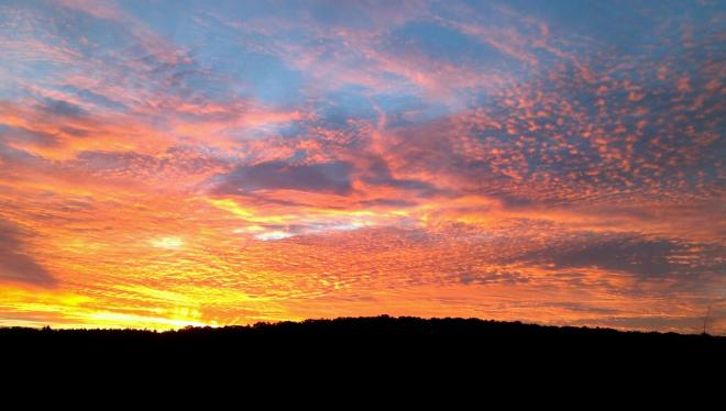 I took this photo while hunting in Randolph county. it was an amazing sunrise