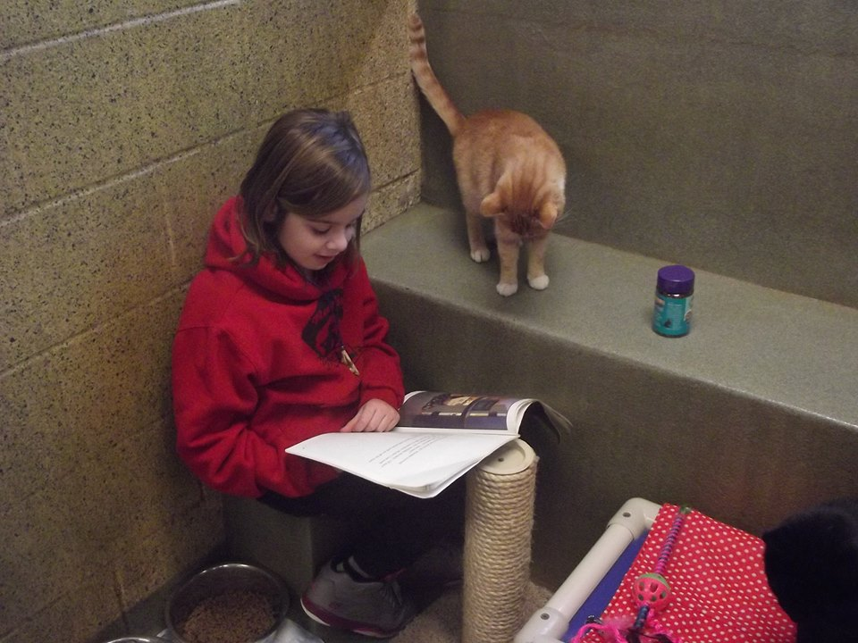 Courtesy: Animal Rescue League of berks County
