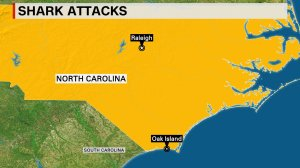 A 13-year-old girl and 16-year-old boy each lost an arm Sunday, June 14, 2015, in separate shark attacks at an Oak Island, North Carolina beach.