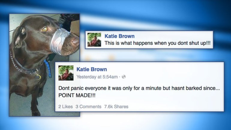 Photo taken from Katie Brown's public Facebook page.