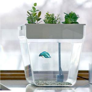 Water Garden/ Courtesy of Uncommon Goods