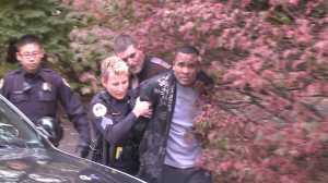 Collier arrest 2