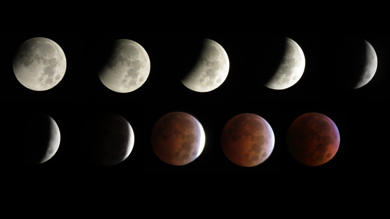 A total lunar eclipse created a blood moon Wednesday morning (Courtesy Harry Wood)