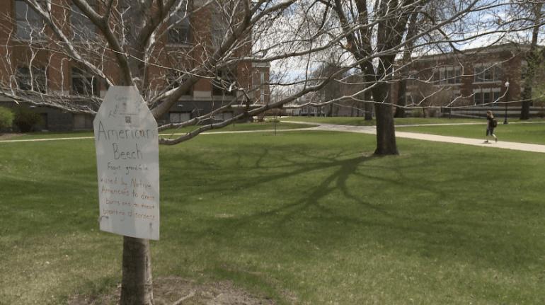 Tree Tags at Drake University