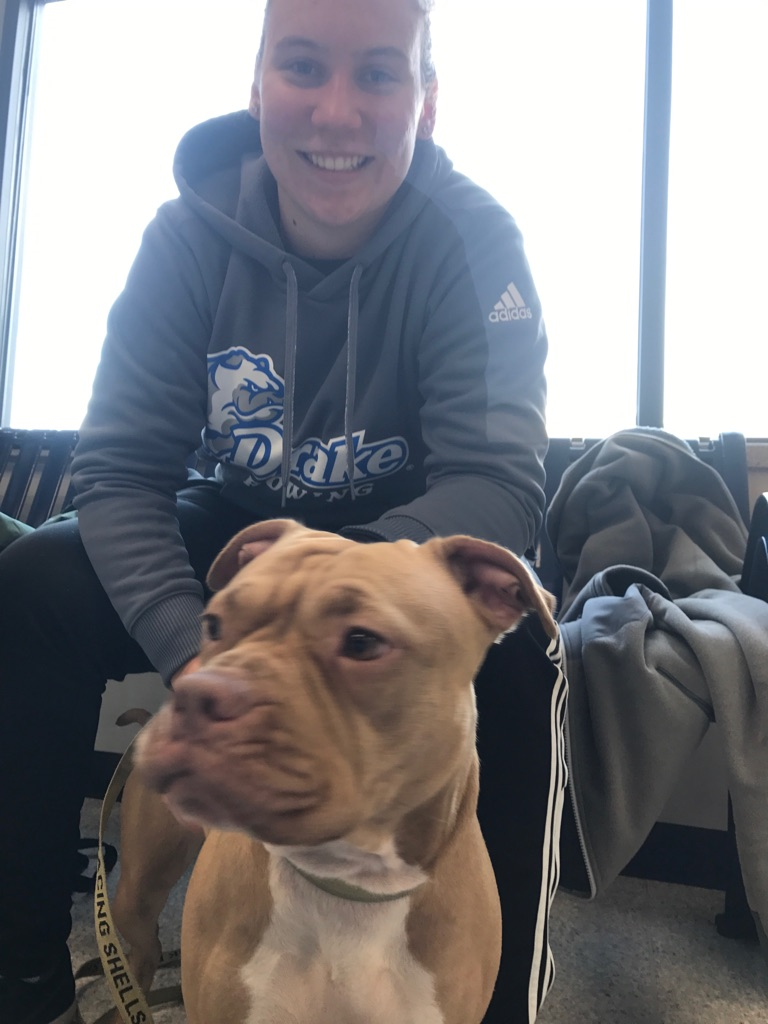 The Drake University women's rowing team rescued two dogs from the Des Moines River on Saturday. (Drake University Rowing Team)