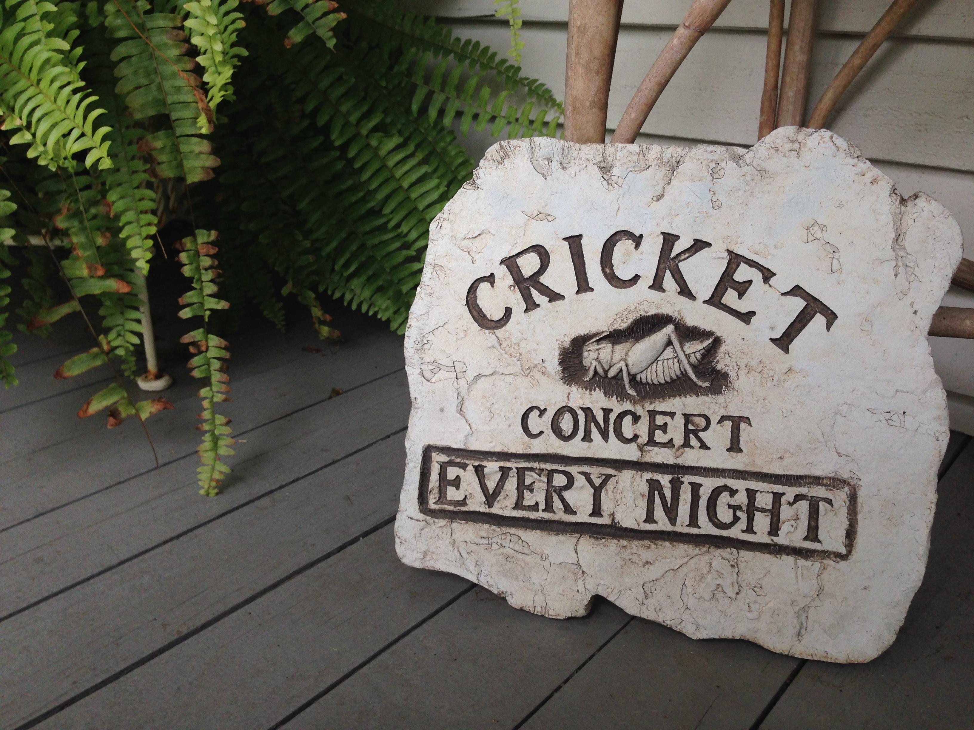 Cricket Concert Sign