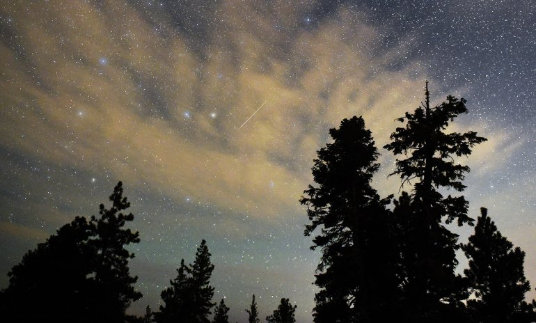A Perseid meteor streaks across the sky above desert pine trees on August 13, 2015 in the Spring Mountains National Recreation Area, Nevada. (Ethan Miller/Getty Images)