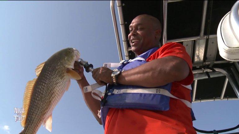 Wild Wayne and his redfish (WGNO-TV)