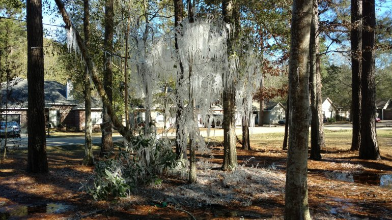 Mandeville Ice Icicles