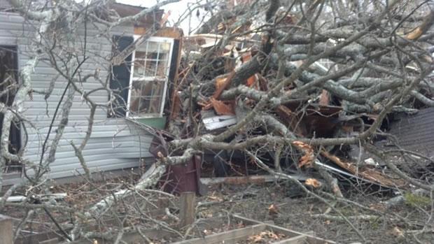 tree-damage620