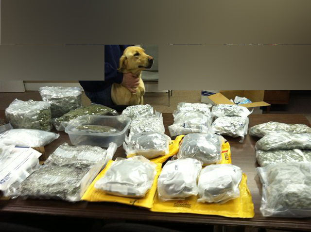 Photo of drugs confiscated after sellers sent them through the U.S. mail.  Sadie, a STAC K-9, helped identify the packages containing drugs.   (Courtesy: Madison County STAC Team)