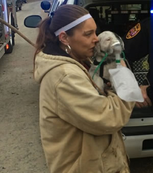 Sadie, the puppy, received some oxygen and TLC after being pulled from the burning home. (Photo: William Szczepanski/WHNT News 19)