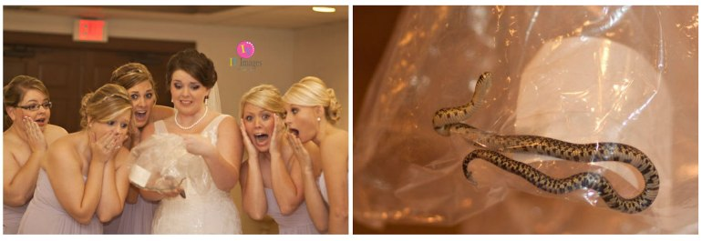 Bride and snake - Photos by 'Images by Tallie'