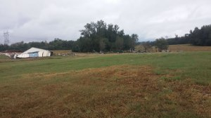 Chicken houses were flattened on Martling Road in the Asbury community of Marshall County. (Photo: Laura Christmas/WHNT News 19)